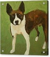 Frog The Dog Acrylic Print