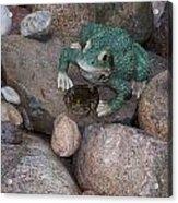 Frogs Imitation And Real  Acrylic Print