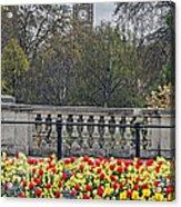 From Buckingham To Big Ben Acrylic Print