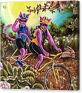 From Purple Cat Illustration 1 Acrylic Print