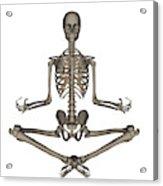 Front View Of Human Skeleton Meditating Acrylic Print