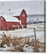Frosted Hay Bales Acrylic Print