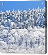 Frosted Mountainside Acrylic Print
