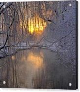 Frosty Morn 2 Acrylic Print
