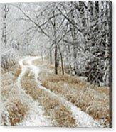 Frosty Trail 2 Acrylic Print