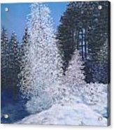 Frosty Trees Acrylic Print