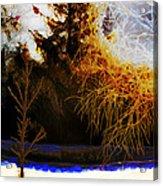 Frosty Winter Morning Acrylic Print