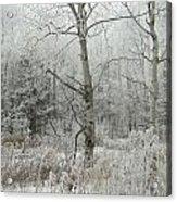 Frosty Wonderland Acrylic Print