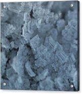 Frozen 2 Acrylic Print