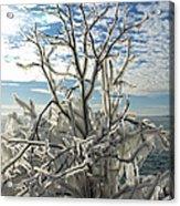 Frozen Backlight Acrylic Print