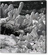 Frozen Falls Tundra Fingers Acrylic Print