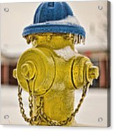 Frozen Fire Hydrant Acrylic Print