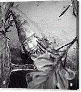 Frozen Gnome Black And White Acrylic Print