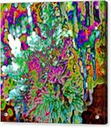 Frozen Juniper Acrylic Print
