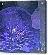 Frozen Knob Acrylic Print