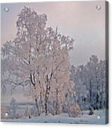 Frozen Moment Acrylic Print