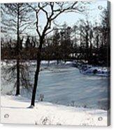 Frozen Pond2 Acrylic Print