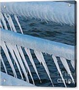 Frozen Stiff Acrylic Print