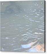 Frozen Tide. Acrylic Print