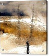 Frozen Time I Acrylic Print