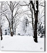 Frozen Tree On A Snow Field Acrylic Print