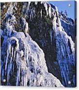Frozen Waterfall On Oregon Central Coast Acrylic Print
