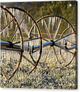 Frozen Wheels Acrylic Print