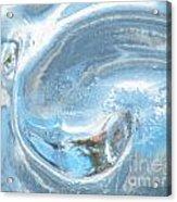 Frozen Yang  Acrylic Print