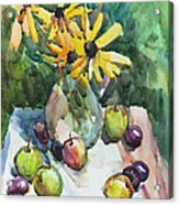 Fruits And Camomiles Acrylic Print