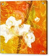 Fruits Of Love Acrylic Print
