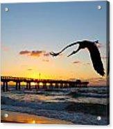 Ft Lauderdale Fishing Pier Acrylic Print