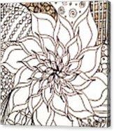 Full Bloom V Acrylic Print