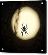 Full Moon And Spider Acrylic Print