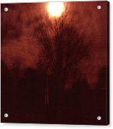 Full Moon Midnight In Garden Denmark Acrylic Print