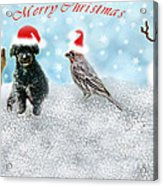 Fun Merry Christmas Card Acrylic Print