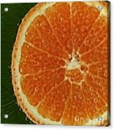 Fun With Fruit Orange Bubbles Acrylic Print