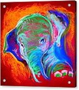 Funky Baby Elephant Blue Acrylic Print