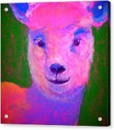 Funky Pinky Lamb Art Print Acrylic Print