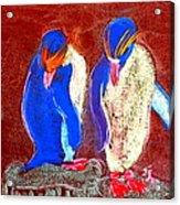 Funky Rockhopper Penguins Acrylic Print