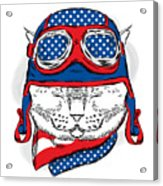 Funny Cat In The Hat And Scarf. Vector Acrylic Print