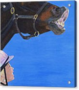 Funny Face - Horse And Child Acrylic Print