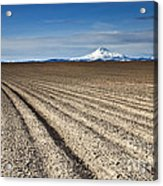 Furrows Acrylic Print