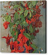 Fushia And Snapdragon In A Vase Acrylic Print