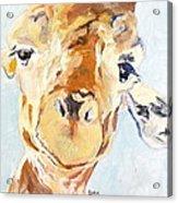 G A Giraffe Acrylic Print