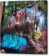Gaffiti In The Candian Forest Acrylic Print