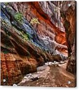 Gallery Of Color Acrylic Print