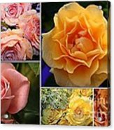 Beautiful Roses- A Collage Acrylic Print