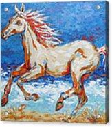 Galloping Horse On Beach Acrylic Print