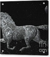 Galloping Through The Universe Acrylic Print by John Stephens