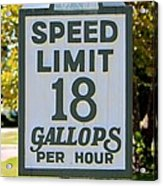 Gallops Per Hour Acrylic Print